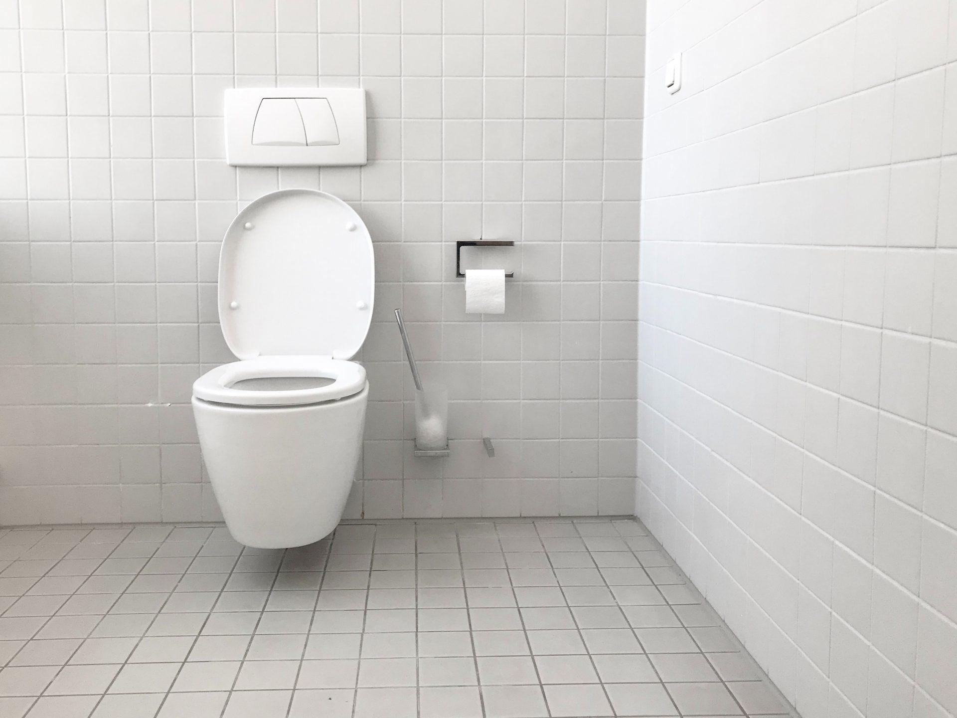 Toilet_Bluephage_WASH
