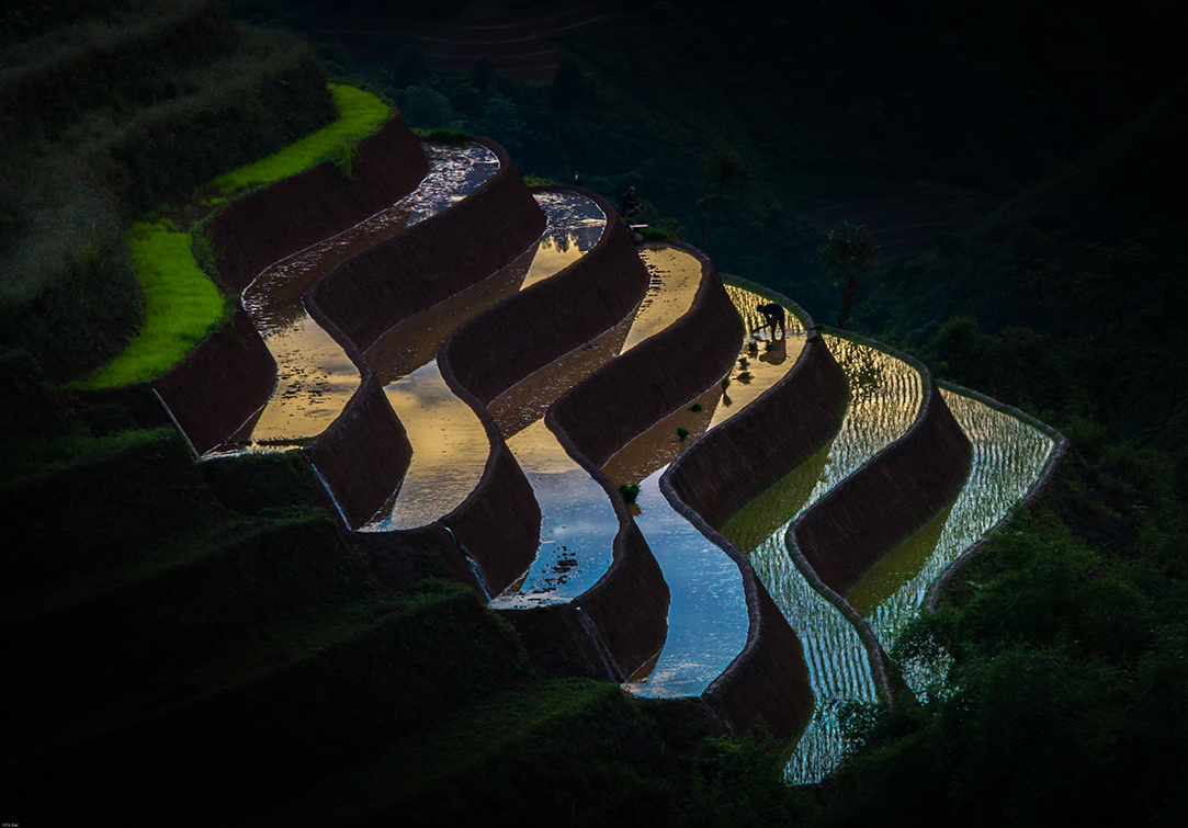 water_agriculture_bluephage_2
