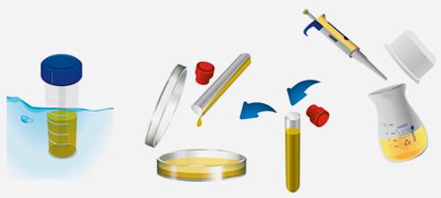 ISO Easy Kit & Material | BP 1601 Application